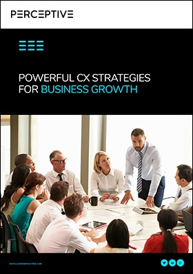 CM-EBK007-Powerful-Leadership-Strategies-for-Business-Growth-through-Customer-Experience-04.jpg