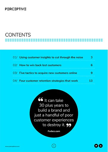 C9-How-to-Aquire-New-Customers-and-Retain-Them_LP-slideshow-1